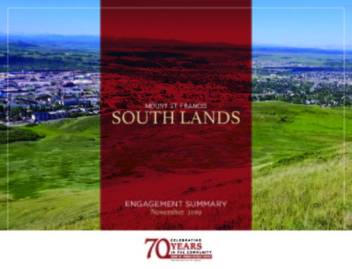 MSF South Lands November 2019 Engagement Summary